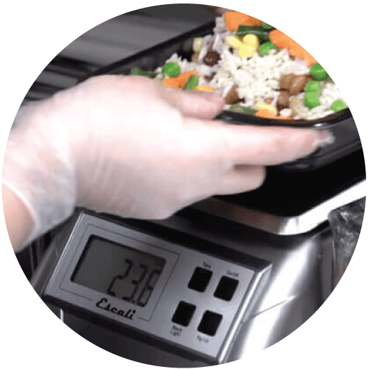 Your tasty weight loss Meals are Carefully Portioned